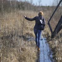 ТОП-6 вариантов, как провести время на Ольманских болотах