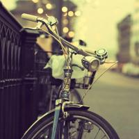 Главный эколог Минска готов пересесть на велосипед ради экологии города