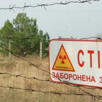 В 2015 году Киев выделит более 25 миллионов долларов на Чернобыльскую АЭС