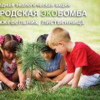 Кому саженец? Семья минчан приглашает посадить деревья. Заявки ждут до 20 сентября