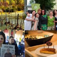Неделя с Зелёным порталом: 8 лет Зелёной сети, как повысить энергоэффективность дома, что сулит болотам новое постановление, и как привлечь птиц и ёжиков на участок?