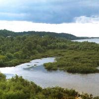 """Нацыянальны парк """"Прыпяцкі"""" прэтэндуе на сертыфікат FSC"""