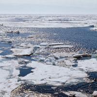 Ученые России и Китая собрали данные об изменении климата в Арктике
