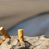 Сигареты являются большим источником загрязнения, чем пластиковые соломинки