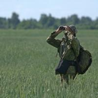 Выдающийся орнитолог Владимир Ивановский получил в подарок к юбилею международную конференцию