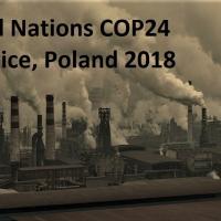 От чёрного к зелёному: в Польше стартовал мировой климатический форум