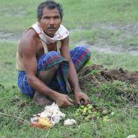 Мужчина 40 лет сажал деревья, чтобы спасти остров от разрушения