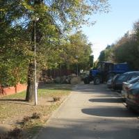 По улице Пулихова в Минске спилили 5 старых деревьев. «Зеленстрой» говорит, что законно, юристы сомневаются