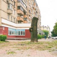 В Беларуси упразднили перечень экологической информации, а следовало дополнить