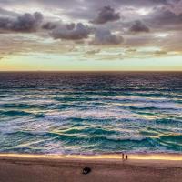 Конференция о биоразнообразиив Канкуне: исчезающих животных спасут коренные народы?