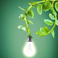 Энергия будущего - электричество из растений