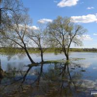 Бездна тонкостей и перспектив: как развивается экотуризм в Беларуси
