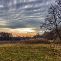 Городские парки Минска: как не превратить архитектуру в лесопосадку?