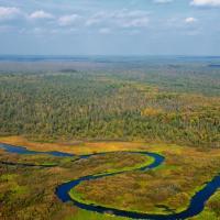 Березинский заповедник получит более 100 тысяч евро на развитие экотуризма