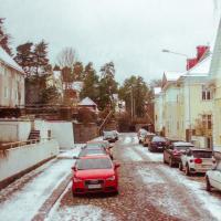 Городской лесничий: Все хотят не зимние дороги, а гоночные трассы