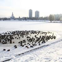 Московский урбанист: Неделю я провёл в Минске и учился фантастическим для нас вещам