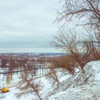 Парк в Подниколье: горожане обсуждают озеленение, архитектор советует делать не как все