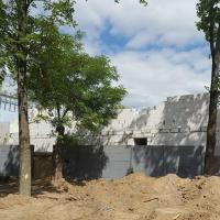 В Гродно магазин расширяет площади и вырубает деревья: жители двора недовольны