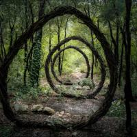 Художник пугает французов мистическими скульптурами в лесу