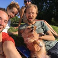 Блокчейн для собаки: программисты хотят создать социальную сеть для домашних животных