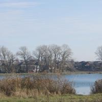 Каналізацыя трапляе ў возера ў Глыбокім: фасфатаў у 33 разы больш за норму