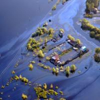 Экологическая катастрофа: город в России затопило нефтью