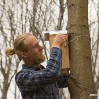 Дахі для птахі: нядзельная працоўня ў парку (фотарэпартаж)