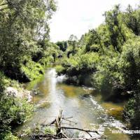 Состояние рек Свислочь и Уза признали удовлетворительным