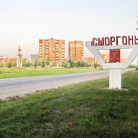 Завод «Кроноспан» в Сморгони: обсуждение пошло по второму кругу
