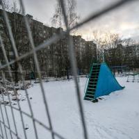 На улице Уборевича пилят 40-летние клены и дубы ради строительства многоэтажки для нуждающихся