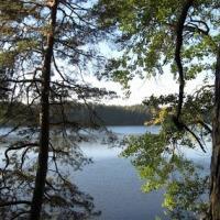 Озеро Веровское в Гродненском районе отдыхающие превратили в свалку