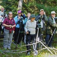 Беловежская пуща приглашает понаблюдать за птицами