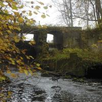 «Театр асбурда». Как активисты борются за сохранение старинной мельницы Томишки в Поставском районе