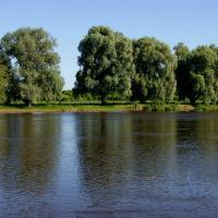 Страна со смаком: На Могилёвщину — есть знаменитые славгородские сыры!