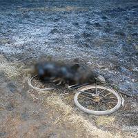 Новая ахвяра агню ў Полацкім раёне: у выніку сельгасвыпальванняў загінуў чалавек