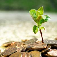 Иностранные инвестиции на службе беларусской экологии