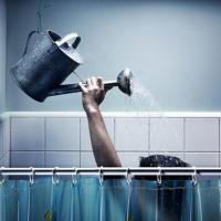 Эксперты: Ежедневные водные процедуры вредят и человеку, и природе