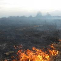 І зноў аб сельскагаспадарчых выпальваннях: агнявыя кропкі Шаркаўшчыны