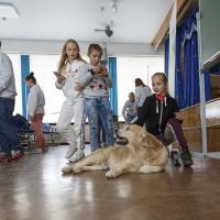 Проект OkiDog провёл первый урок «про собак»  в столичной гимназии