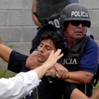 Защитники экологических прав в бедственном положении: число убийств по всему миру зашкаливает