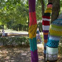 Ярнбомбинг добрался до Минска: в парке Горького утеплили деревья вязаными нарядами