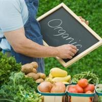 Конференция по развитию органического сельского хозяйства в Беларуси