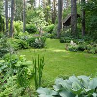 Семинар-круглый стол  «Лесной сад: практические подходы»
