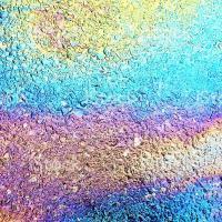 Полезные черви и краска из отходов. Пять новых экоразработок беларусских учёных