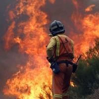Лесные пожары на Пиренейском полуострове: 40 погибших в Португалии и Испании