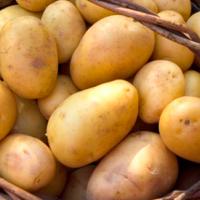 В Британии придумали дома из арахиса и картошки
