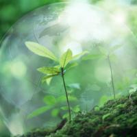 Конкурс на участие в программе «Правовое сопровождение» для экологических организаций
