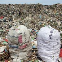 В Новой Зеландии запрещают пластиковые пакеты