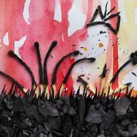 Чем опасны поджоги сухой травы?