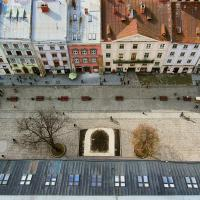 «Теперь у нас всегда спрашивают»: как жители Львова взяли озеленение города в свои руки
